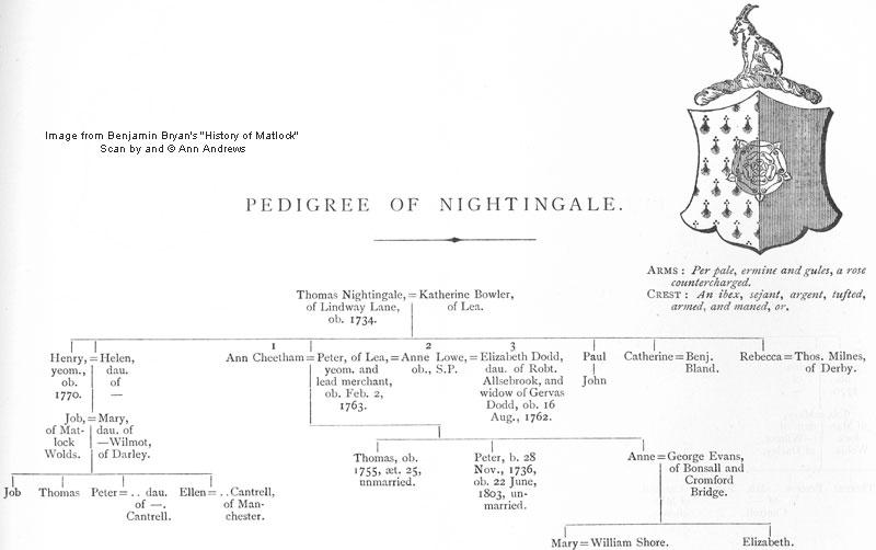 Pedigree Of Nightingale